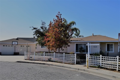 Oceanside Single Family Home For Sale: 2103 Loquat Place