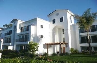La Costa Rental For Rent: 2005 Costa Del Mar Rd. #624