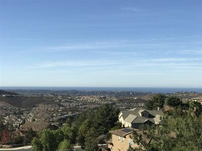 San Marcos Rental For Rent: 1438 Misty Sea Way
