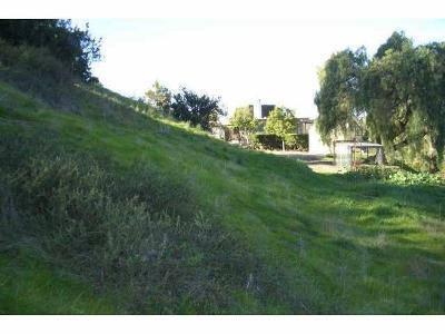 Bonita Residential Lots & Land For Sale: 3860 Palm Drive #59305