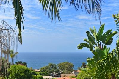 Del Mar Single Family Home For Sale: 2131 El Amigo Road
