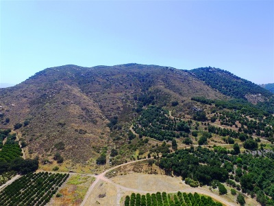 Fallbrook Residential Lots & Land For Sale: Pala Rd #1