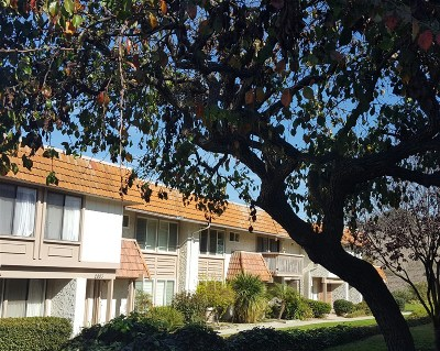 Carlsbad Townhouse For Sale: 2807 Via Magia