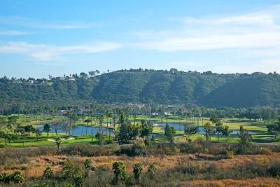 Del Mar Single Family Home For Sale: 4670 Caminito San Sebastian