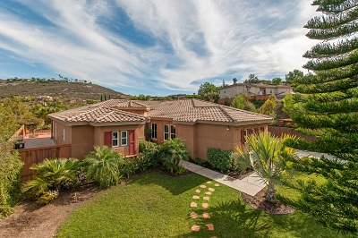 Vista Single Family Home For Sale: 2409 Andersen Lane