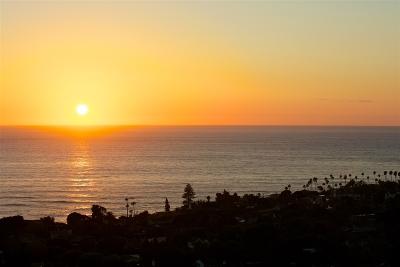 La Jolla Single Family Home For Sale: 850 La Jolla Rancho
