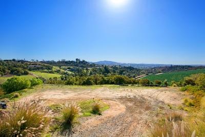 Bonsall Residential Lots & Land For Sale: 3996 Via Monte Alegre