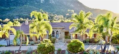 Valley Center Single Family Home For Sale: 14737 Interlachen Terrace