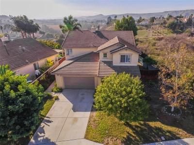 Oceanside Single Family Home For Sale: 915 Niguel St