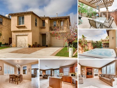San Marcos Single Family Home For Sale: 958 Avalon Way