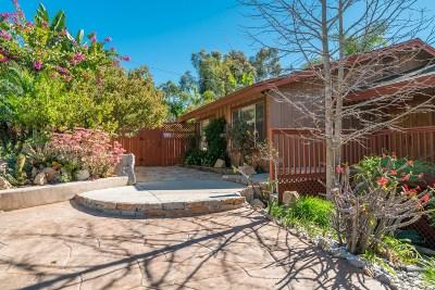 Vista Single Family Home For Sale: 1769 Alta Vista Dr