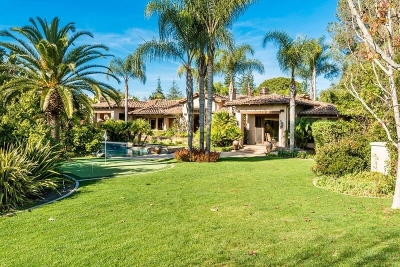 Rancho Santa Fe Single Family Home For Sale: 17323 Via De Fortuna