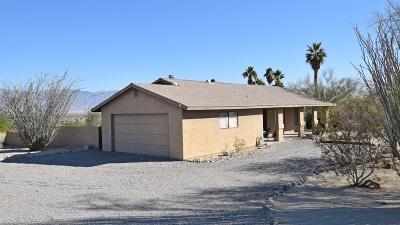 Single Family Home For Sale: 1738 Smoke Tree Lane