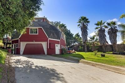 San Marcos Single Family Home For Sale: 3349 Via Perlita