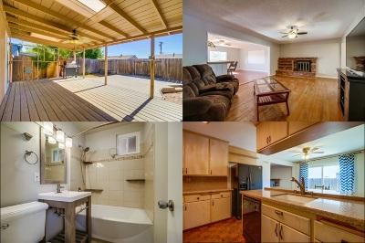 Single Family Home For Sale: 8767 Hiel Street