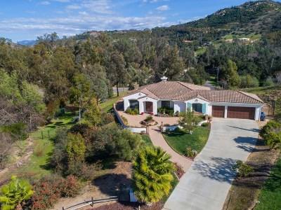 Fallbrook Single Family Home For Sale: 3360 Gigi Court