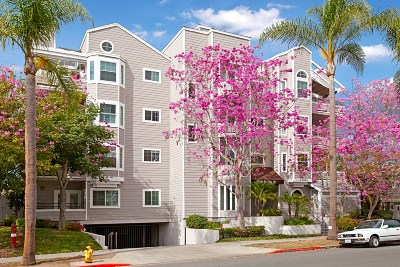 San Diego Attached For Sale: 3666 3rd Ave #304