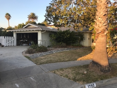 Carlsbad Single Family Home For Sale: 1790 Andrea Ave