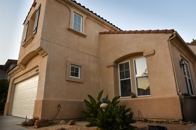 Carlsbad Single Family Home For Sale: 3226 Rancho Quartillo