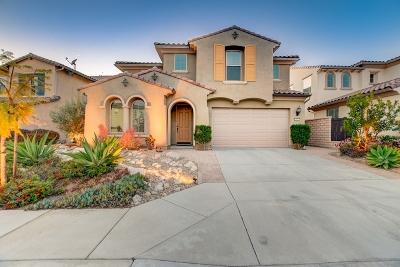 Vista Single Family Home For Sale: 532 Machado Way