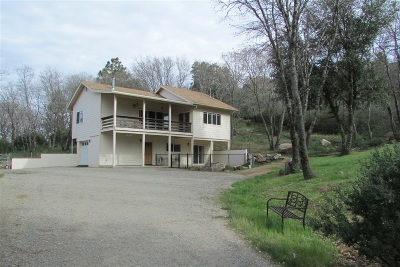 Single Family Home For Sale: 893 Pine Cone Dr