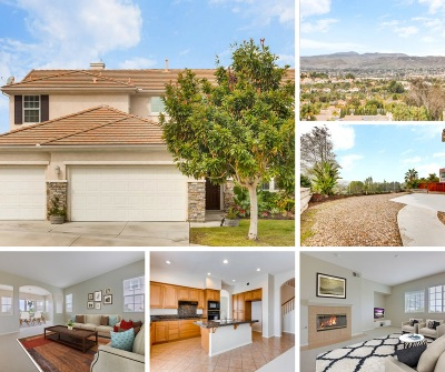 Oceanside Single Family Home For Sale: 1301 Panorama Ridge Road