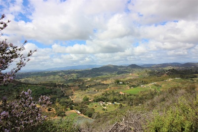 Fallbrook Residential Lots & Land For Sale: Mountain Rim