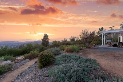Poway Single Family Home For Sale: 14868 High Valley Rd