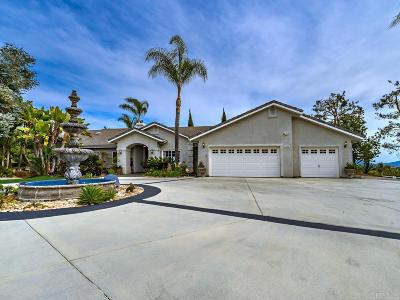 Fallbrook Single Family Home For Sale: 3646 Paseo De Olivos