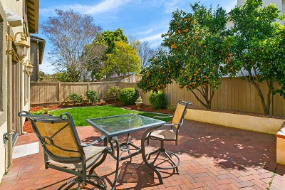 Oceanside Single Family Home For Sale: 364 Spring Canyon