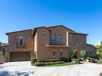 Oceanside Single Family Home For Sale: 2117 Timneh Ct