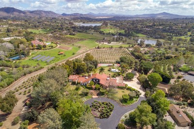 Rancho Santa Fe Single Family Home For Sale: 18163 Via De Fortuna