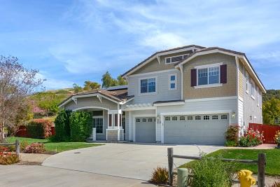 Escondido Single Family Home For Sale: 304 Hidden Trails Rd