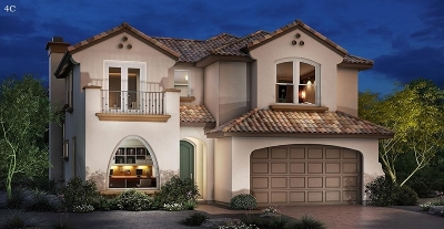 Carlsbad Single Family Home For Sale: 6671 Peregrine Place