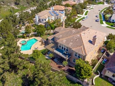 Carlsbad Single Family Home For Sale: 7041 Heron Cir