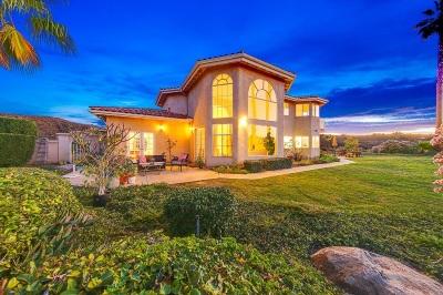 Vista Single Family Home For Sale: 2359 Elevado Road