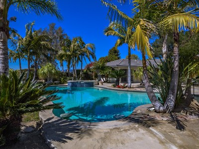Single Family Home For Sale: 1085 Camino Alisos