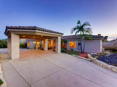 Escondido Single Family Home For Sale: 10143 Circle P Ln