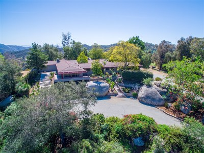 Escondido Single Family Home For Sale: 10283 Hidden Meadows Rd