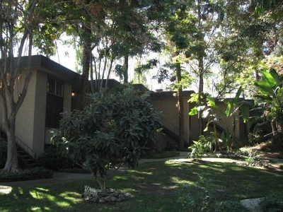San Diego County Multi Family 5+ For Sale: 4302 Palm Ave.