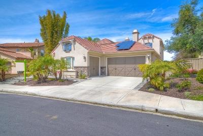 Carlsbad Single Family Home For Sale: 3290 Avenida Del Alba