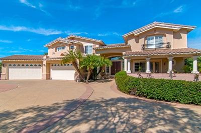 Encinitas Single Family Home For Sale: 3370 Lone Hill Lane