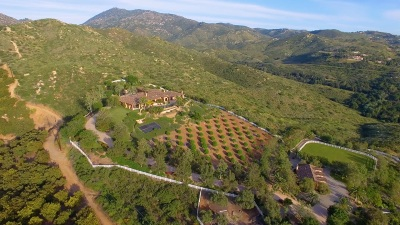 Poway Single Family Home For Sale: 17087 Old Coach Rd