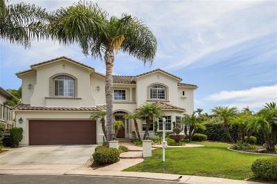 Encinitas Single Family Home For Sale: 511 Paloma Ct