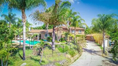 Escondido Single Family Home For Sale: 2624 Puebla Street