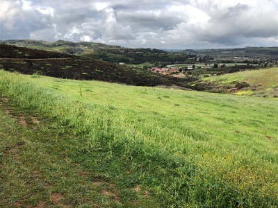 Bonsall Residential Lots & Land For Sale: Lilac Road W. #1