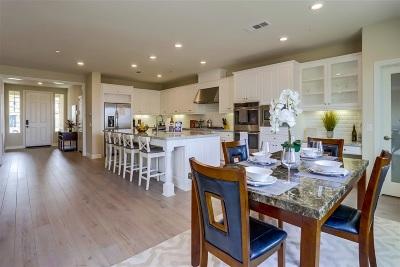 Single Family Home For Sale: 2047 Del Rincon Pl