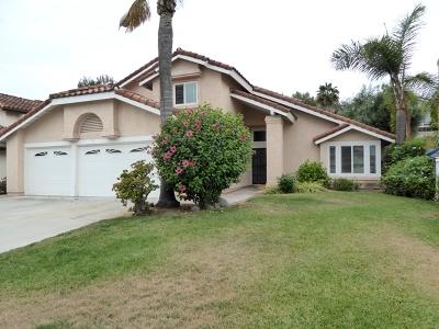 Vista Single Family Home For Sale: 1164 Casa Bonita Way