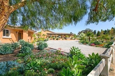 el cajon Single Family Home For Sale: 876 Liberatore Ln