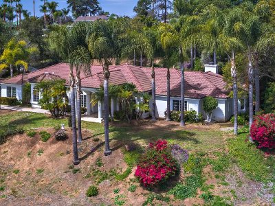Single Family Home For Sale: 3129 Camino Portofino
